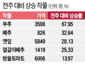 수입 늘어…대파값 2주새 5천원 → 3천원