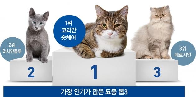 '프라다 입고 유산 상속'...6조원 펫코노미 4가지 트렌드