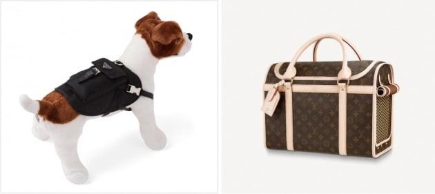 프라다의 반려동물 가방(왼쪽)과 루이비통의 도그 캐리어(반려동물 이동 가방) /프라다 코리아·루이비통 코리아 제공