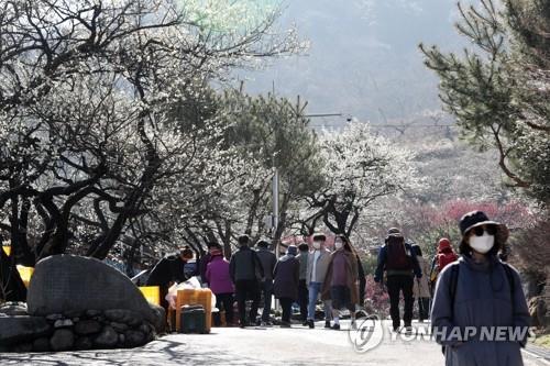 3월 첫 주말 전국 유원지·관광지, 상춘객 발길 이어져