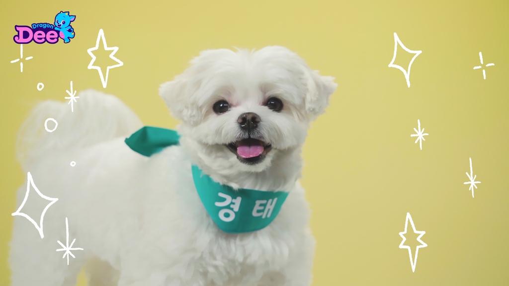 [방송소식] 윤정희, '지금, 헤어지는 중입니다'로 7년만 복귀
