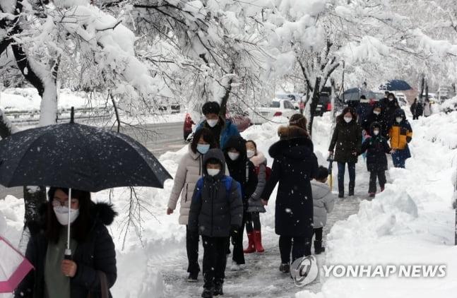 눈 1m 내린 강원도, 버스 끊기고 도로통제…고립속출