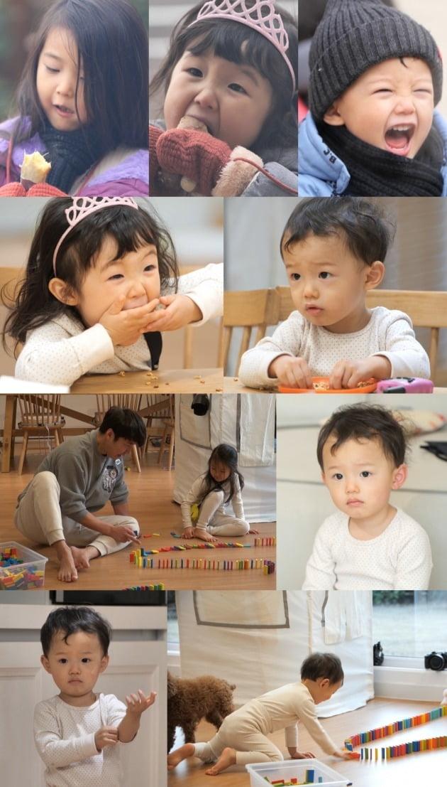 '슈돌' 윤상현과 아이들을 메이비를 위한 이벤트를 준비한다. / 사진제공=KBS 2TV