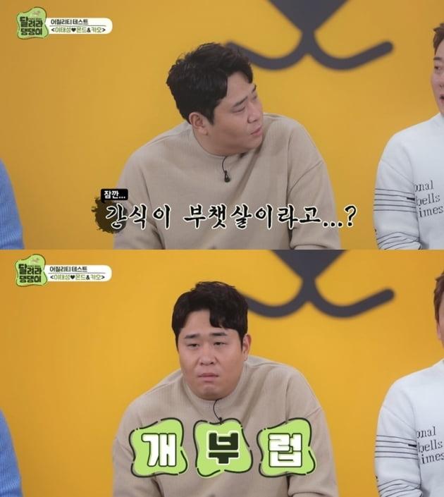 '달려라 댕댕이' / 사진 = MBC 에브리원 제공