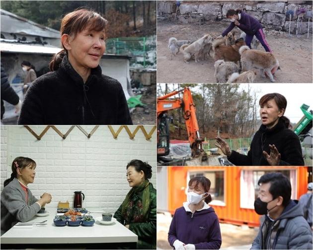 '스타다큐 마이웨이' 이용녀 / 사진 = TV조선 제공