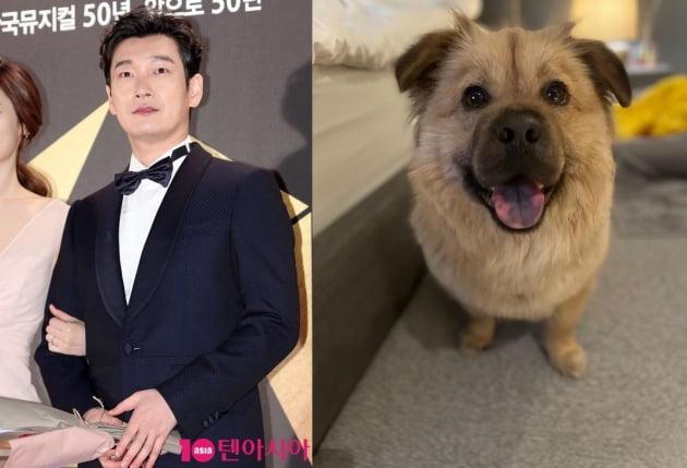 배우 조승우와 반려견 곰자/ 사진=텐아시아DB, 인스타그램