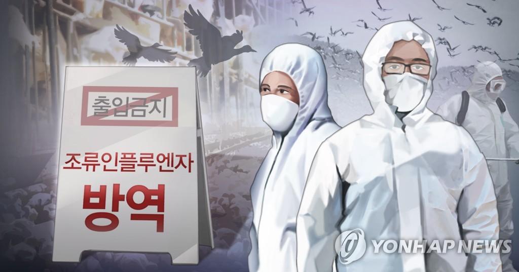 강원 고성 송지호 일대 철새에서 고병원성 AI 검출
