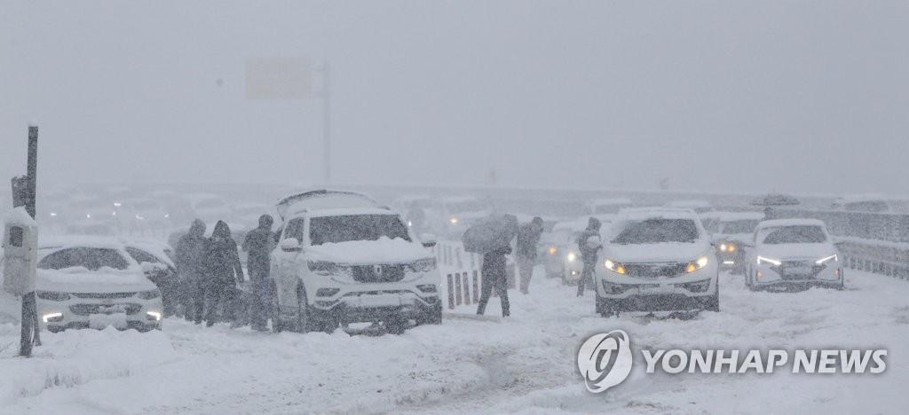 진부령 31cm 폭설…산간도로 통제되고 곳곳에서 '쿵쿵'