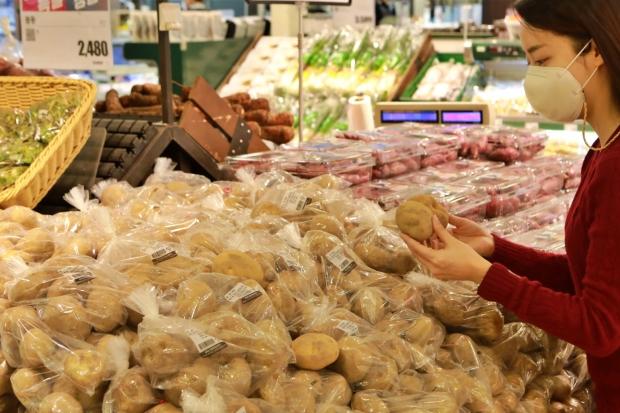 가격 급등하 대파, 감자 가격 잡아라!