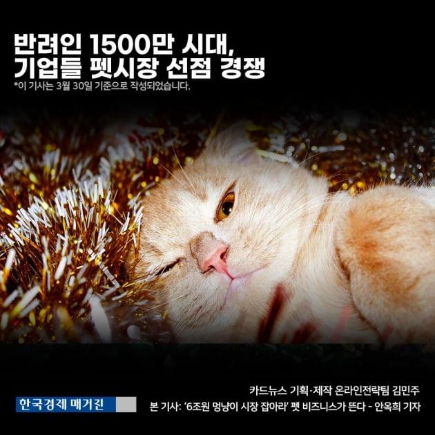 [영상 뉴스] 반려동물 양육 인구 1500만 시대, 기업들 펫시장 선점 경쟁