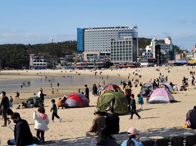 4일 인천시 을왕리해수욕장에 방역 수칙을 어기고 텐트를 설치하는 사람들이 몰렸다. /사진=신현보 한경닷컴 기자