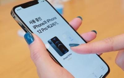 애플 '아이폰12' 폭풍구매하는 LG직원들