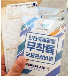 무착륙 관광비행(hankyung.com/economy/article/202103306579i)