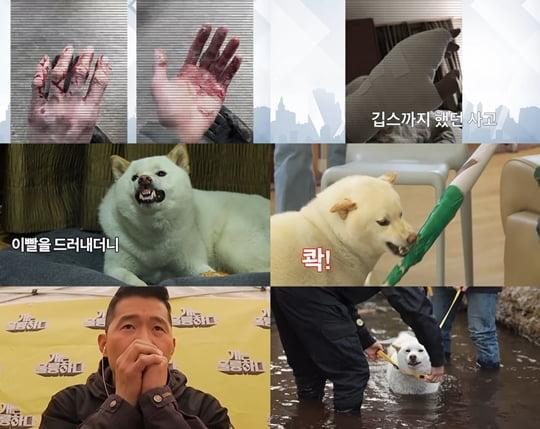 개훌륭 이경규(사진= KBS2 '개는 훌륭하다')