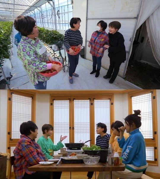 '박원숙의 같이삽시다 시즌3'(사진=KBS)