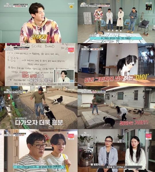 '개훌륭' 강형욱 (사진= KBS2TV 제공)