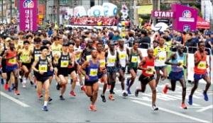 대구에서 2019년 열린 대구국제마라톤 대회에 참가한 엘리트 풀코스 참가자들.  대구시 제공