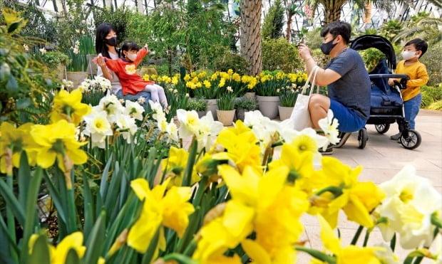 [포토] 서울식물원은 '봄꽃 세상'