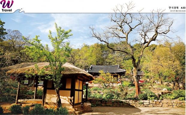 소나무, 대나무, 매화, 국화, 난초 등이 어우러진 백운동원림. 조선시대 원림의 극치를 보여준다.