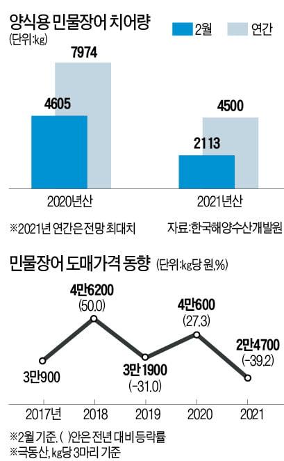1마리 8000원…'민물장어의 굴욕'
