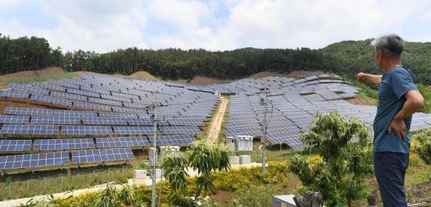 농촌 마을에 대규모로 설치된 태양광 패널이 환경과 자연 경관을 훼손하고 있는 모습 /한국경제신문