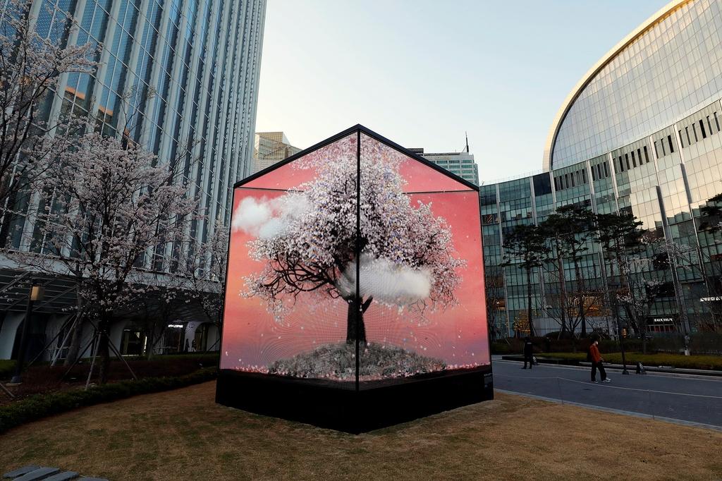 롯데월드타워, 랜선 벚꽃축제 연다…10CM·악뮤 버스킹 공연도