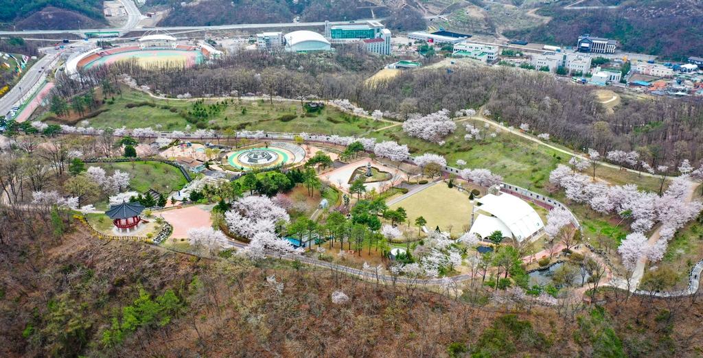 [픽! 영동] '용두공원'에 찾아온 완연한 봄