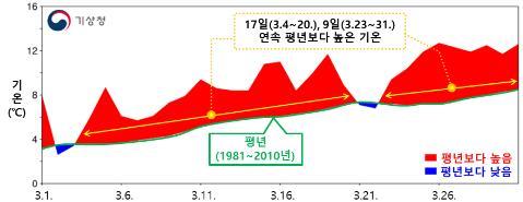 올해 역대 가장 따뜻한 3월…서울 벚꽃 개화 99년만에 제일 빨라