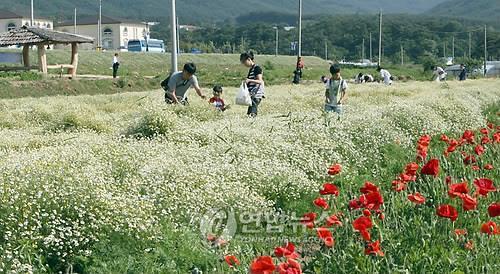 전북도 동부권 개발에 5년간 1천800억 투입…동서 균형발전 기대