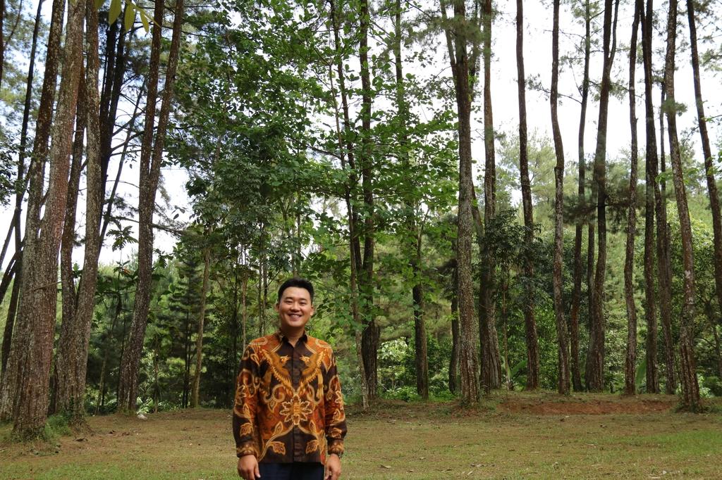 [잘란 잘란] '숲의 보물섬' 인도네시아, 나무 성장 속도 6배속 이상