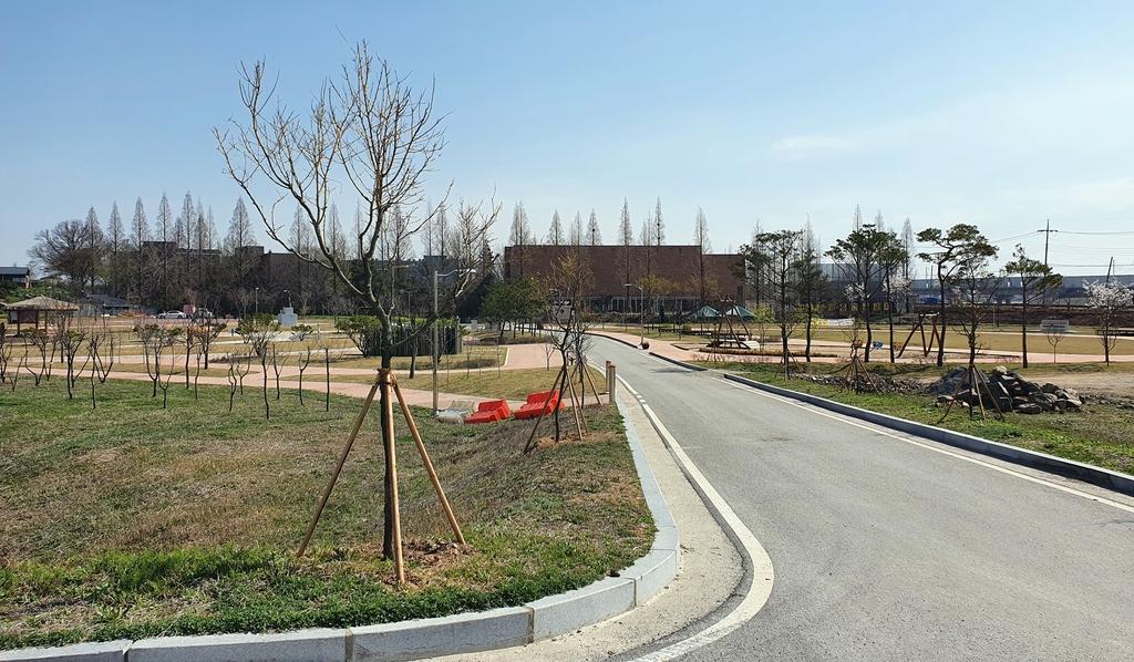 당진 버그내 순례길 새 단장…황금회화나무 200그루 심어