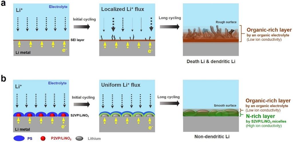 질산리튬 보호막으로 폭발 없는 이차전지 구현