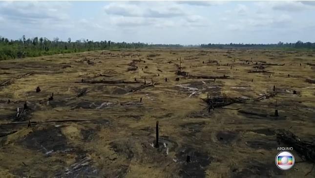 '아마존 기금' 파행시켜놓고…국제사회에 손 벌리는 브라질