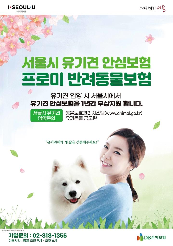 DB손해보험, 유기견 입양한 서울 가정에 반려동물보험 제공