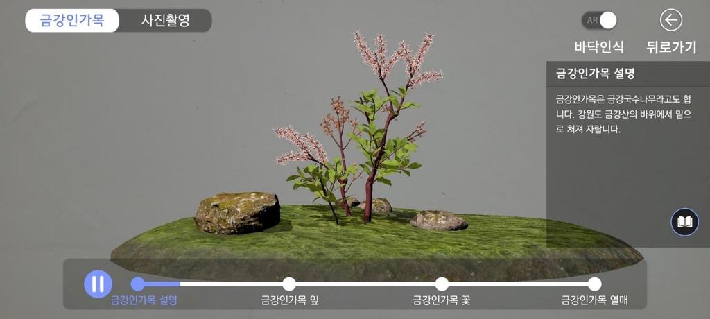 """""""북방계 식물 AR로 만나요""""…국립수목원 앱 개발"""