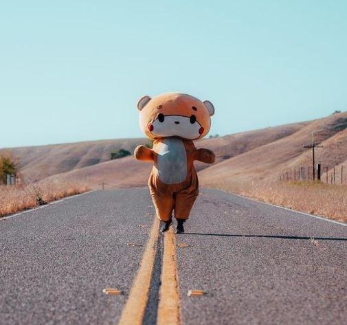 곰인형 눌러 쓴 걷기왕 640km 종단, LA에서 샌프란시스코까지