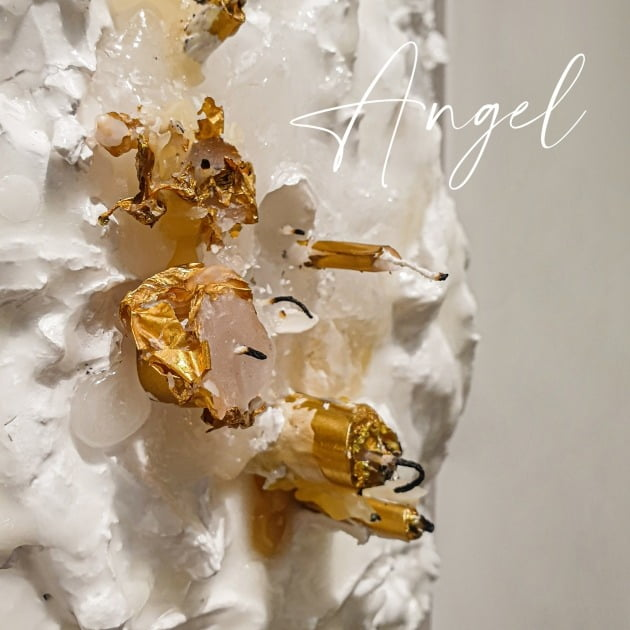 경매로 팔린 솔비의 새 음원 'Angel'이 낙찰자의 동의를 얻어 대중에 공개된다. / 사진제공=엠에이피크루
