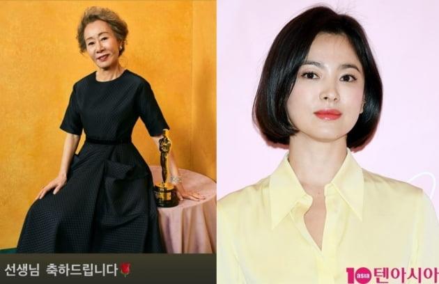 배우 윤여정(왼쪽)과 송혜교/ 사진=인스타그램, 텐아시아DB