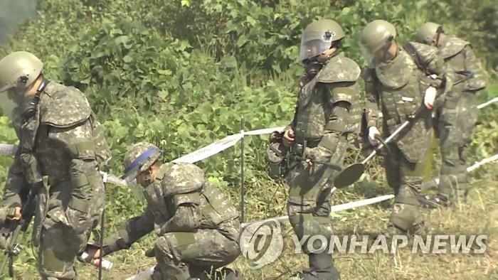 군, 민통선·방공진지 주변 지뢰제거…보호장구 착용