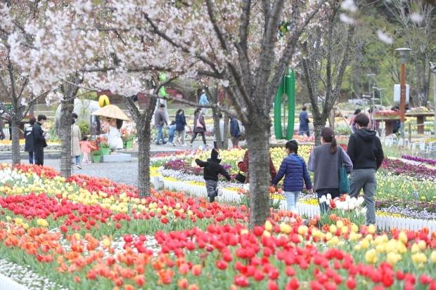대구 달성군 송해공원에서 나들이객들이 산책을 즐기고 있다. /연합뉴스