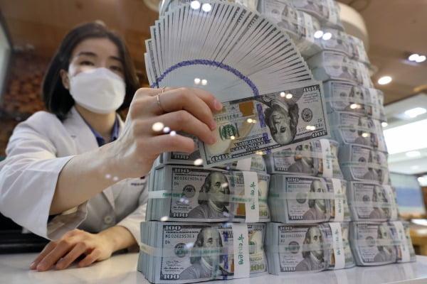 4일 오후 서울 중구 하나은행 명동점 위·변조대응센터에서 직원이 미국 달러화를 검수하고 있다./사진=뉴스1
