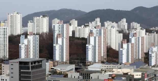 세종시 일대의 아파트 전경. / 사진=뉴스1
