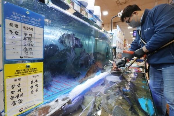 일본 정부가 후쿠시마 제1원자력발전소 오염수의 해양 방출 결정을 내린 지난 13일 서울 동작구 노량진수산시장에서 수산시장 관계자가 일본산 참돔을 대상으로 방사능 측정을 하고 있다. /사진=뉴스1
