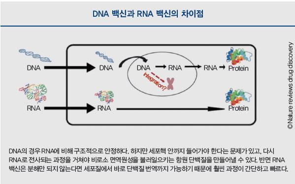 [배진건의 바이오 산책] mRNA 백신 기적을 경험하며 다가올 'RNA World'를 준비한다