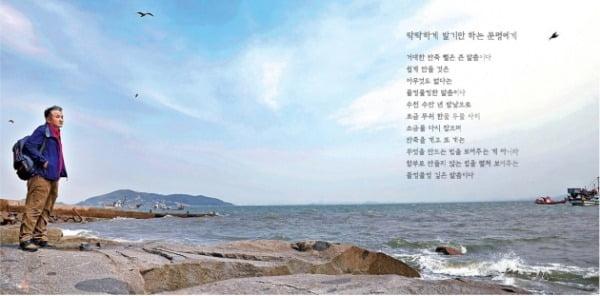 함민복 시인이 강화도에 처음 정착했던 곳이 동막해변 인근 마을이다. 함 시인은 동막해변에 관한 여러 편의 시와 에세이를 썼다.
