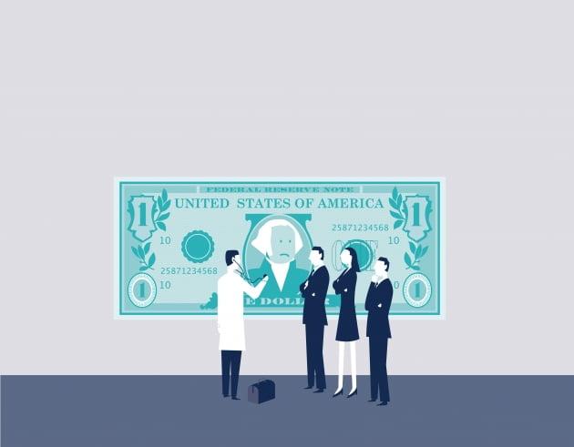 금융당국, 달러보험 안전장치 지적 배경은