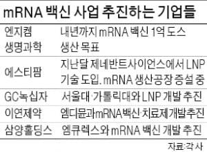 엔지켐생명과학, mRNA 백신 원료 위탁생산