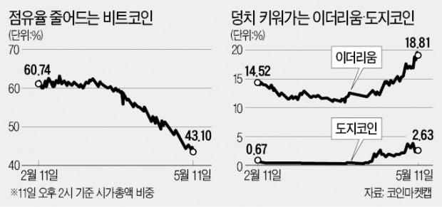 알트코인 광풍 뒤 암호화폐 '거품 붕괴'?