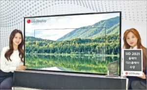 LGD, 롤러블 OLED '올해의 디스플레이상'