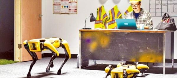 현대차그룹이 인수하기로 한 보스턴다이내믹스가 개발한 로봇 개 '스팟'. 현대자동차그룹 제공